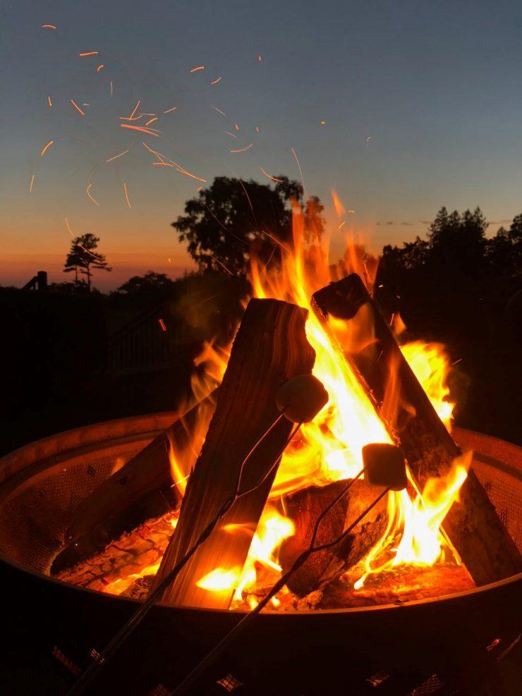 Berkenhout in de vuurkorf